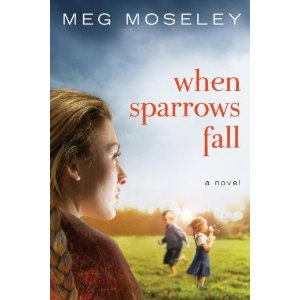 When Sparrows Fall, Meg Mosely, NOrthern georgia