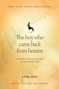 the boy who came back from heaven, alex malarky, book review, kevin malarky, books about heaven, book about heaven, boy who went to heaven